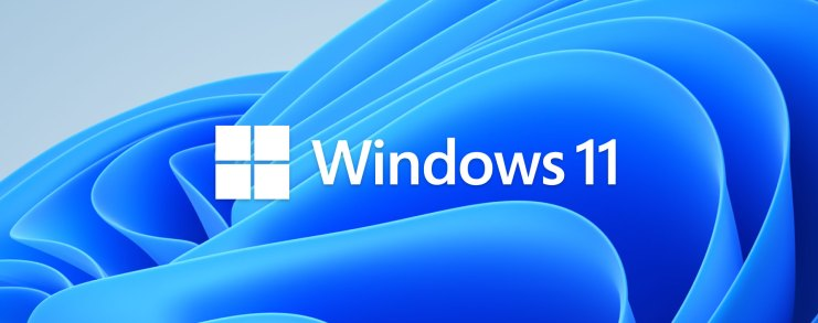 A screen shot of the new Windows 11 wallpaper with Windows 11 text.