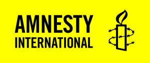 Amnesty international consultancy