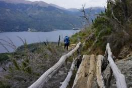 Frey hike