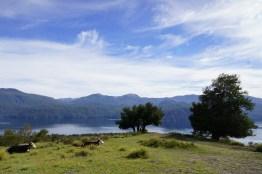 Lago Lacar High View
