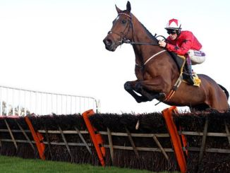 National hunt racehorse jumps hurdle
