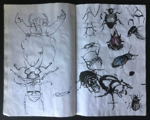 Metamorphosis Sketchbook, 14 x 9 in., 1985