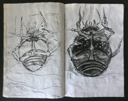 """Metamorphosis"" Sketchbook, 14 x 9 in., 1985"