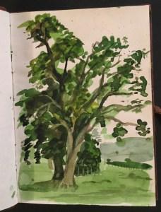 Sketchbook - Wells, 2001