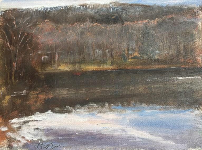 Upton Lake, Morning, December 29th, 2018