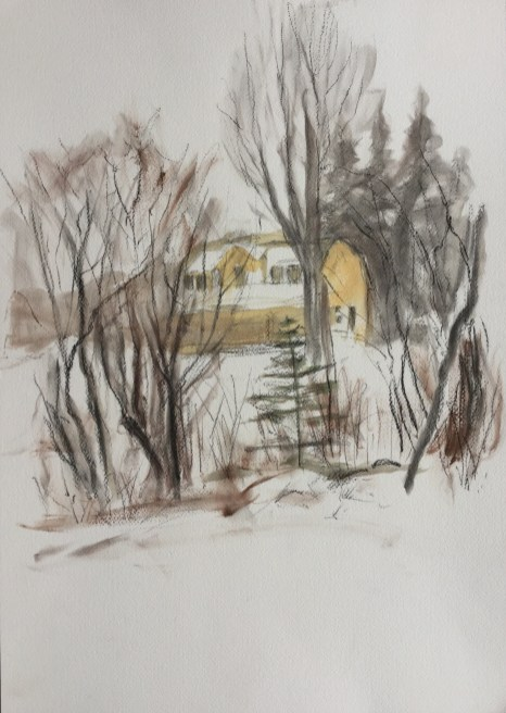 Min's Garden - December, Castine, 2010