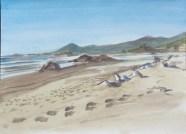 Bailey Beach, 2008