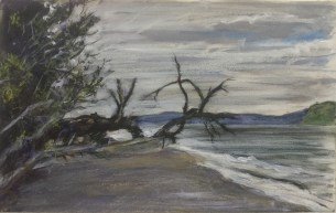 The Beach at Tala Shore, Overcast Afternoon, June, 2016