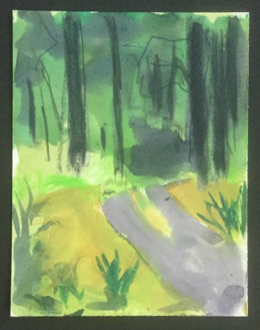 Driveway from the Kitchen Window III, Phoenix Nest, 2013,
