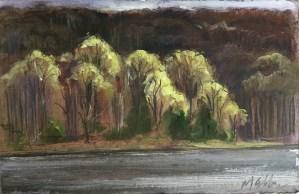 Upton Lake, April 21st, 2019,