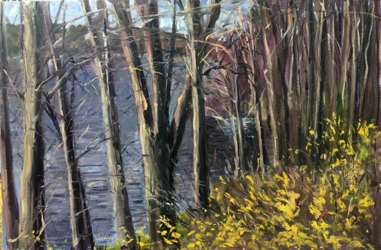 Upton Lake, Through the Trees, 10:20 am, April 11th, 2020