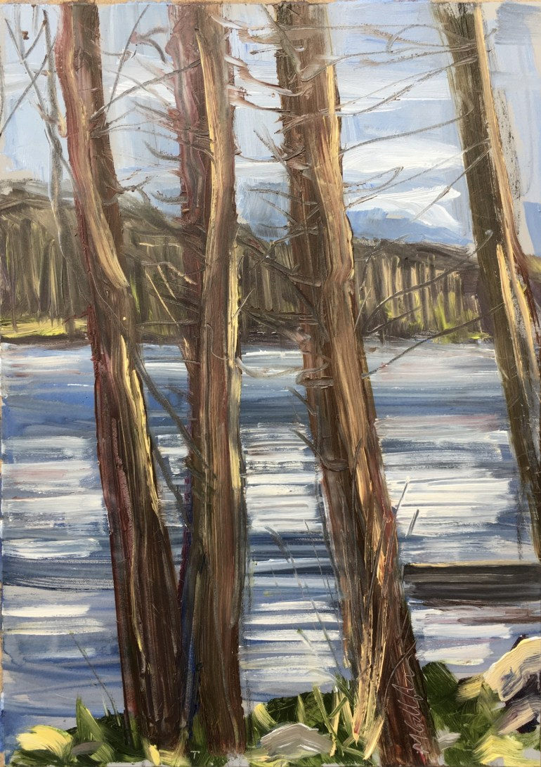 Upton Lake through the Trees, 3:30 pm, April 25th, 2020