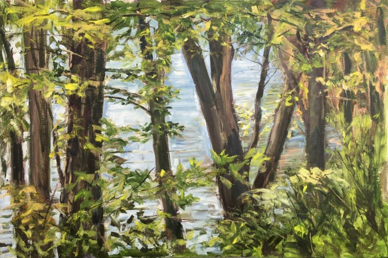 Upton Lake through the Trees, 3:45 pm, May 19th, 2020