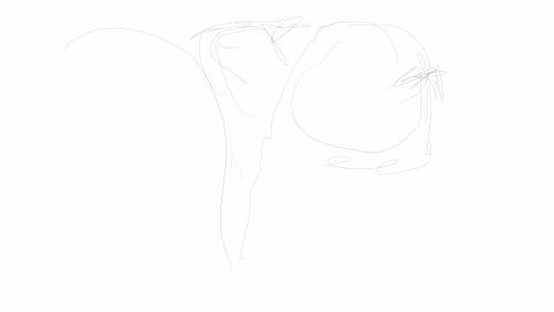 Sketch1342279