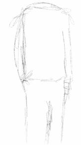 Sketch36222624