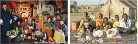 Beispiele aus dem Hungry-Planet-Projekt