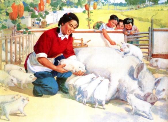 Farming pigs for the Revolution