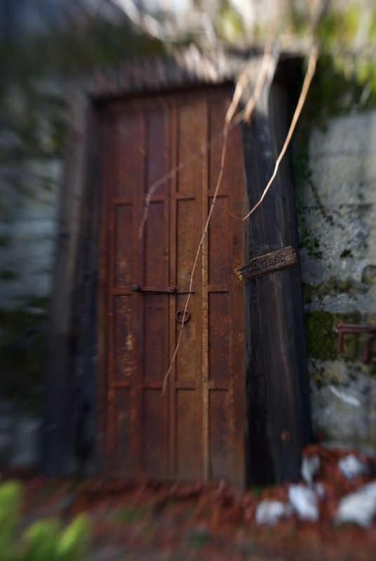 A Lensbaby view of a closed door.