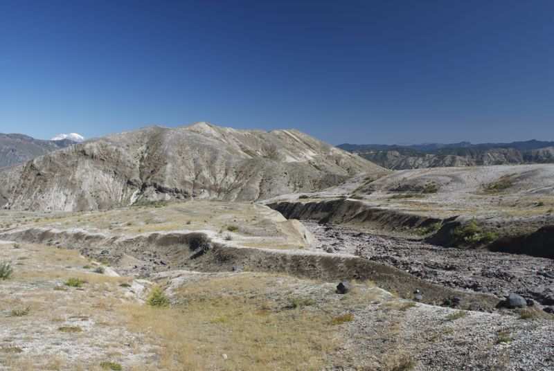 The blasted zone around Mt. St. Helens is oddly beautiful.