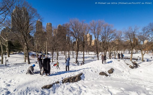 Central Park Snow