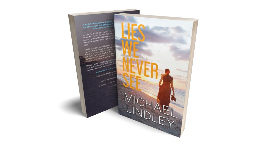 Meet Hanna Walsh from Michael Lindley's new novel, LIES WE NEVER SEE.