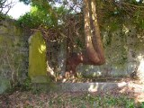 old protestant graveyard swinford co mayo