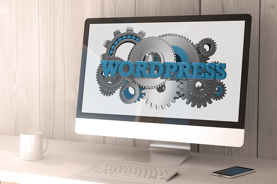 WordPress Theme and Web Developer