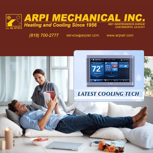 ARPI-Mechanical website design and management