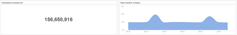 LogInsight-Netflow-Transferred