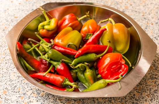 Sauere Chilies-1