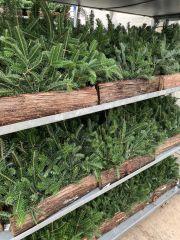 Winter Log In Progress!