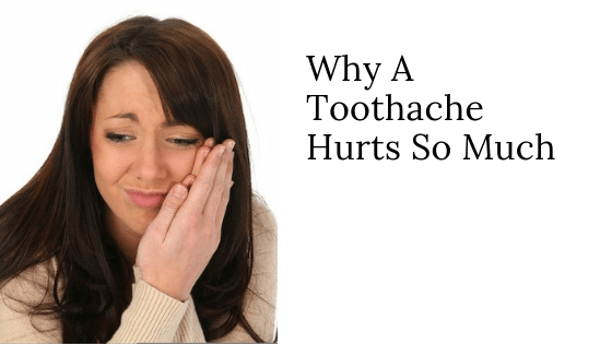 Why A Toothache Hurts So Much