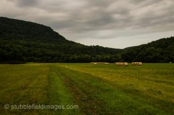 New hay rain