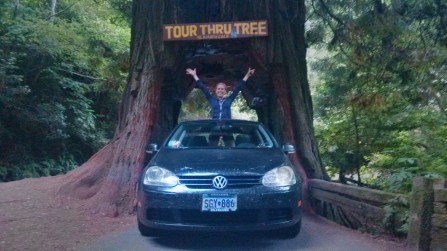 Drive Thru Tree, Klamath, CA