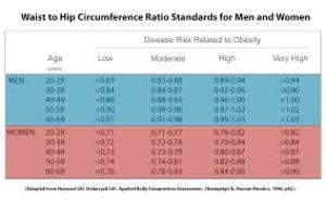 hip to waist ratio chart: Compelling research on waist to hip ratio daily steps and sugar