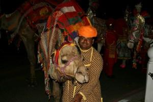 camelwedding