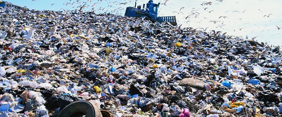 Śmieciowa reforma śmieciowa