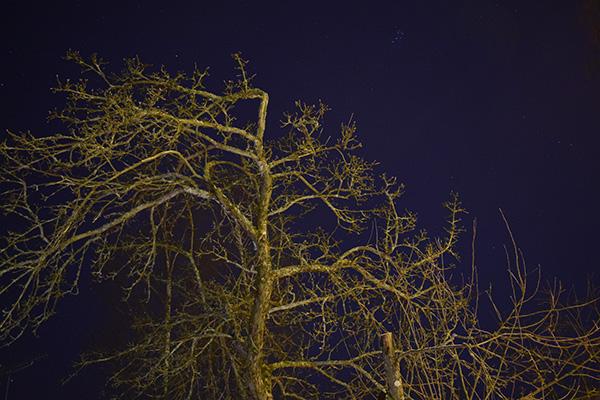 Noche Finlandia