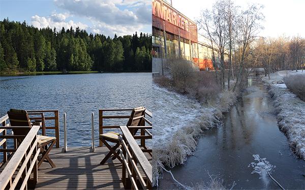 ¿Cuál es la mejor época para viajar a Finlandia? Pros y contras