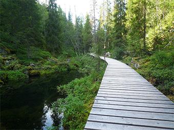 Primer Parque Nacional Finlandia