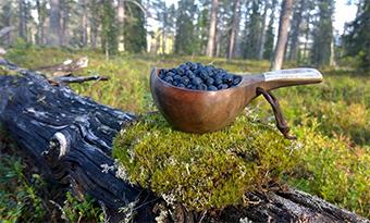 Kuksa, la tradicional taza de madera que nunca debes lavar