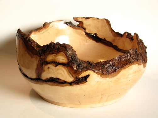 Hidden in Bark -3 Live edge maple bowl