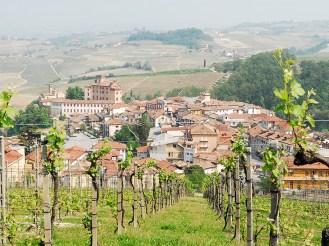Piemont, Barolo, Wein