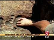 Un  pied humain  ...fossilisé.