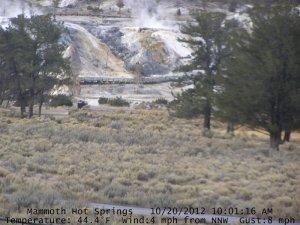 Au-début de l'hiver 2012, la webcam face au Mammouth Terrace indique 44 degrés Celsius.