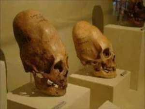 Les crânes allongés découverts depuis plusieurs années,seraient d'origine Annunaki (extraterrestre).