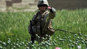 Avec l'arrivée de l'OTAN en Afghanistan ,la production d'opium a augmenté de 40% et les profits de 700%...les  mercenaires d'Al Qaîda sont puissants et riches,seuls les profits comptent.