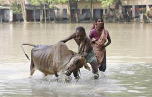 En 2014,nous vivons des innondations partout dans le monde.
