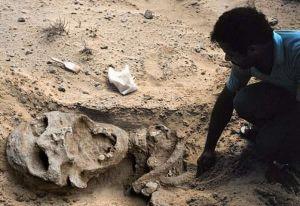 """A Gargayan, dans la province nord des Philippines, on a trouvé le squelette d'un géant qui ne mesurait pas moins de 5,18 m. Ses incisives avaient 7,5 cm de longueur et 5 cm de largeur."""""""