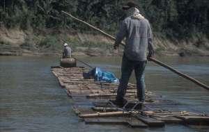 Exploitation forestière à Madre de Dios, sud-est du Pérou.